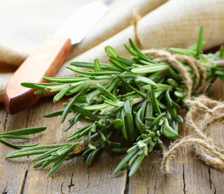 Rozmarinas - ne tik sveikatai, bet ir grožiui: 17 savybių ir 8 kaukių receptai