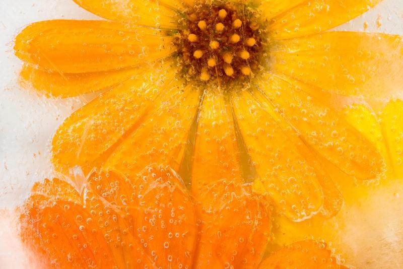 5 priežastys į grožio rutiną įtraukti ledo kubelius